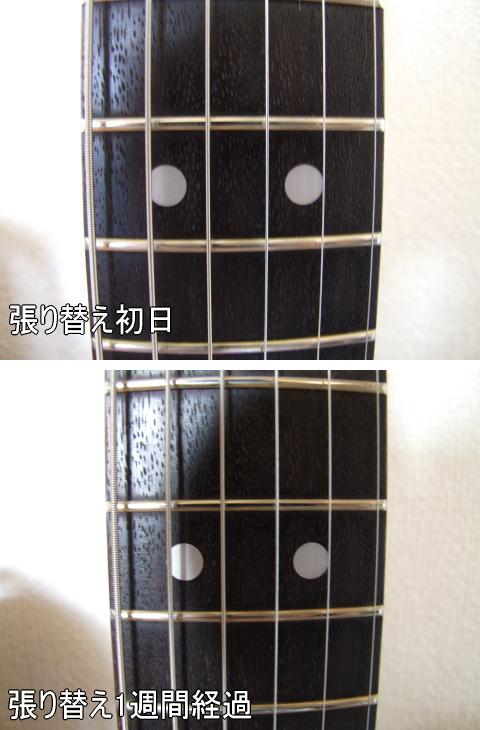 any03.jpg